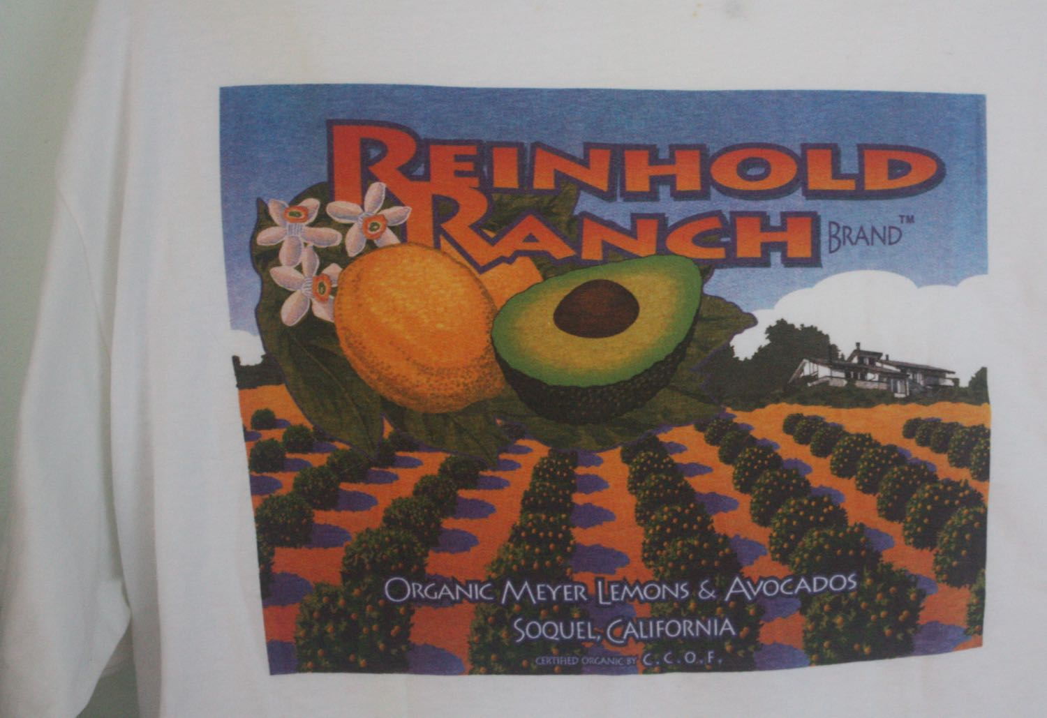 Santa Cruz Reinhold Ranch Avocads