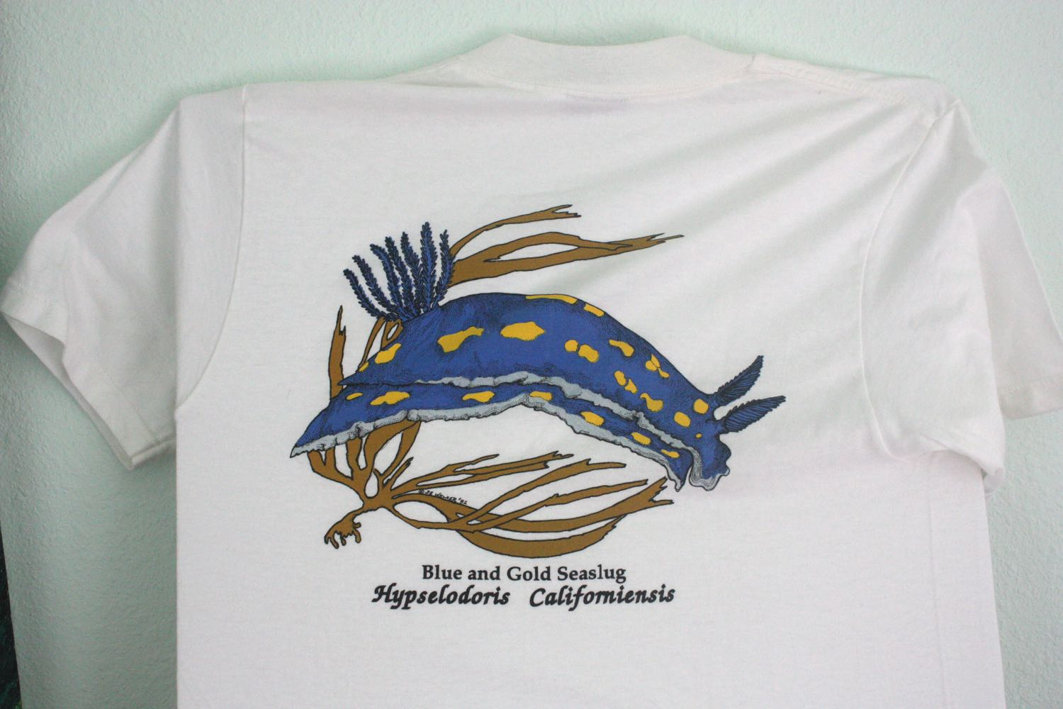 UCSC Long Marine Lab Sea Slug Tee 1